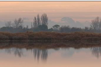Séance d'affût flottant dans la lagune de Salses-Leucate