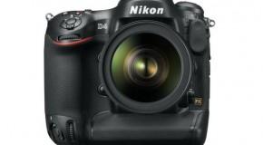 Nikon D4 en photographie nature et animalière