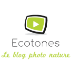 Ecotones le blog photo nature