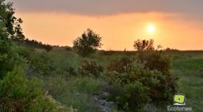 La fête de la biodiversité en photos – Marcevol, 26 et 27 Mai 2012